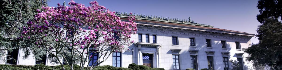 Cal Hall building and Magnolia tree decorative