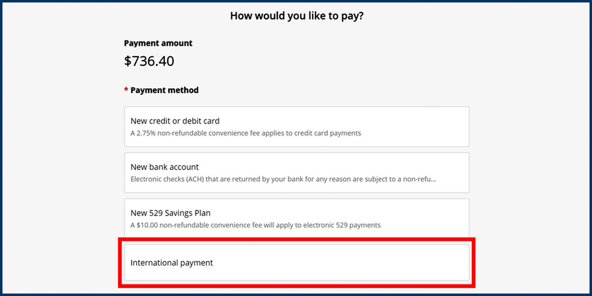 Screenshot of the CashNet Make a Payment page showing the International payment option