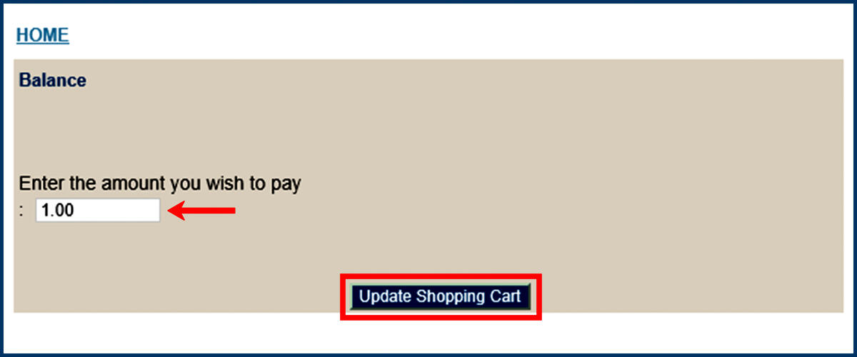 Screenshot of the CashNet Make Payment page with Enter amount option