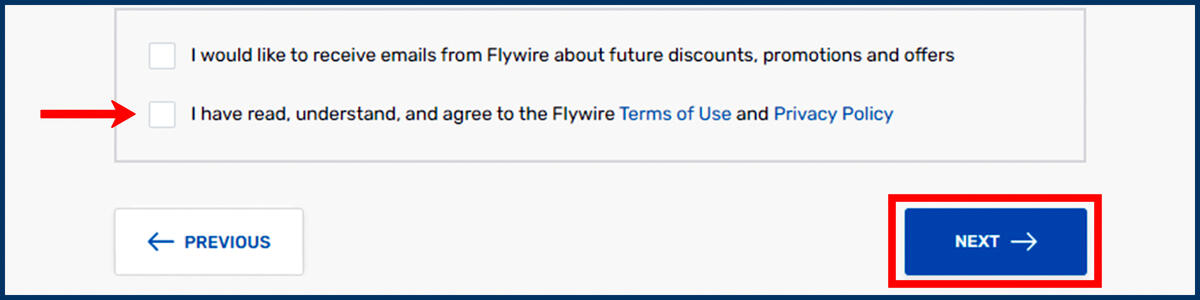 Screenshot of the Flywire Payer Information page with Next button