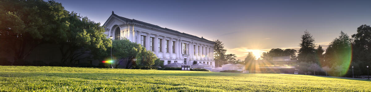 Memorial Glade and Doe Library Sunset decorative